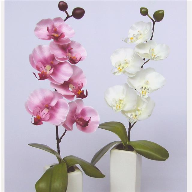 Artificial Mini Orchid Potted Cream White Vase Decorative Orchid