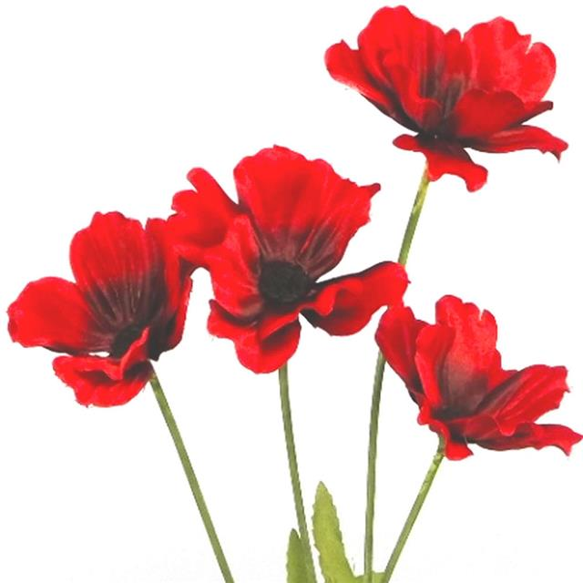 X2 Artificial 48cm Flame Red Poppy Flower Stem Decorative Silk